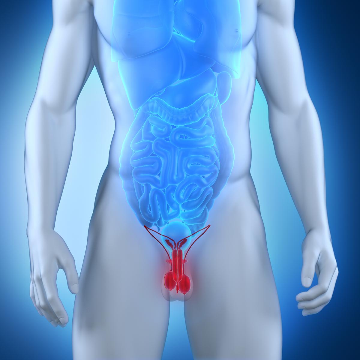 Insufficient sperm production-3419