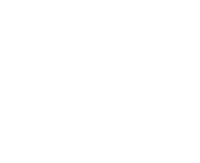 twitter-bird-white-bgs